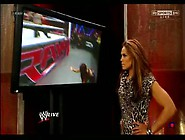 Wwe Divas 1/21/13 Kaitlyn Vs Alicia Fox/aj Lee