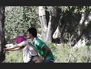 Turbanli Hijap Agac Porn