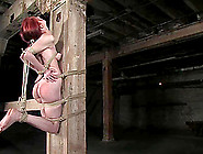 Redhead Calico Gets Tickled And Tortured In Bdsm Video