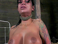Curvaceous Angelina Has To Suck The Dick While Unable To Resist