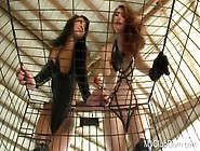 Caged And Humiliated