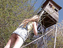 Abigaile Johnson Enjoys Upskirt Rear Banging In The Forest