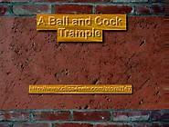 Geburtstagsgeschenk - Cock Ball Trample