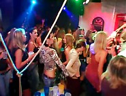 Leather Girls On The Bar Dancing Sensually