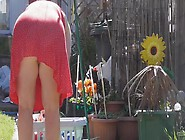 A Wife Upskirt No Knickers Hanging Washing