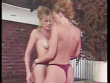 Sometimes Some Vintage Lesbian Porn Is All You Need To See