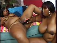 Black Bbw Lesbians