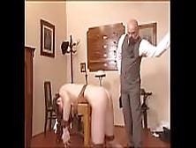 Porn galleries Free screaming orgasm mpeg