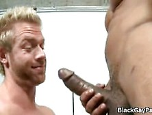 Dude Gets Savage Pounding From Massive Black Cock