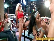 Hot Girls Actually Fuck The Stripper For Jizz By Jenni