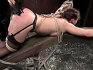 Katja Kassin Enjoys Being Spanked And Drowned In This Hot Bdsm S