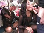 Brunette Sucking Dick In Cash Stunt
