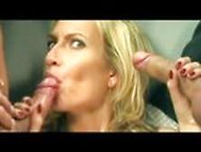 Sophie Evans Se Aprovecha De La Polla De Manuel Ferrara