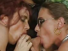 Bea Dumas - Koelle Alaaf - Videos Porno Gratis - YouPorn