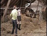 Ponyhof Pervers