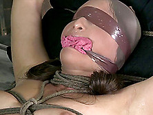 Sexy Bondage Slave Oiled Pussy Getting Pounded Hardcore In Bdsm