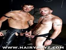 Mignon recommends Anal man penetration