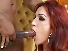 Orgasmic Guys Cum In Sluts' Cunts In This Compilation