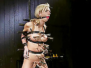 Kaylee Hilton Is Screaming Loud Even Through The Ball Gag
