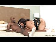 Ebony Bbw Anal