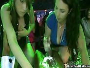 Porno Live Nel Locale Hot Dove La Ragazze Fanno Di Tutto