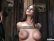 Huge Tits With Pierced Nipples Of Rachel Roxxx Will Blow Your Mi