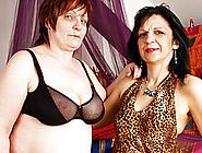 Aged Lesbi Bbws Inside Stockings Not Far From Dildos