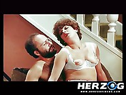 Herzog Videos Hairy Seventies Porn