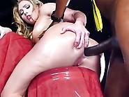 Beautiful Bitch Anal Pounding By Black Cock