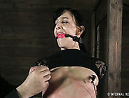 Leggy Brunette Gets Her Anal Hole Fucked In Bdsm Sex Tube Clip