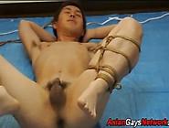 Amateur Asian Teen Tied