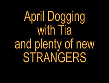 April Dogging With Tia - Xhamster. Com