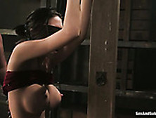 Bald Headed Master Mindy Main Punishes Tied Up Busty Whore