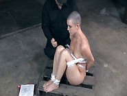 Bald Headed Gal Is Tied Up Before Torturing