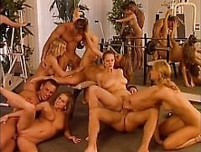 Orgy Featuring Jane Darling,  Barbara Summer,  Lucy Love And Other