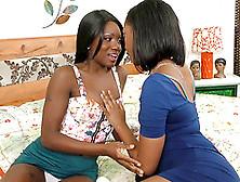 Lesbian BBW 34,213 videos ElephantTube