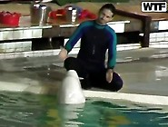 Sweet Young Dolphin Trainer Girl Natasha Got Hotly Excited And S
