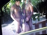 Brazilian Syuds 4
