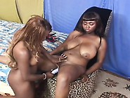 Big Tit Ebony Lesbians Try Out Their New Vibrators And Lick Some
