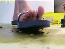 Kasandra(Spain)-Flip Flop Rampage