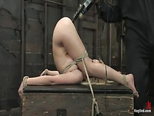 bondage sin Free samantha