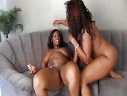 Sexy Curvy Black Lesbians Ride Each Other's Faces