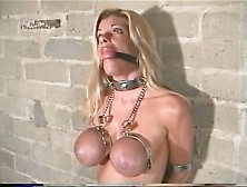 Hot Horny - Tied Tits G123T - Xhamster. Com - Eroprofile