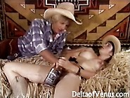 Hairy Cowgirl Gets Banged In A Vintage Porn By Deltaofvenus
