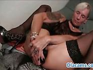 Small-Tits Blonde Hardcore Anal Web
