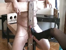 Cbt Day Lady Victoria
