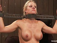 Especially Kinky Lesbie Sadism Performance Nearly Christina Cart