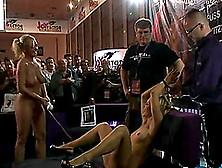 bdsm erniedrigung live sex show