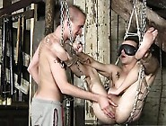 Gay Video Bondage Sling Sex For Dan Jenkins