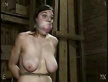 Insex - Breast Torture